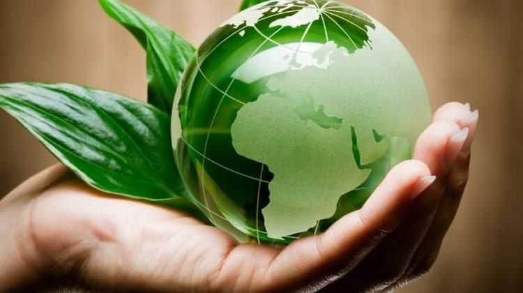 День эколога отмечается сегодняв России