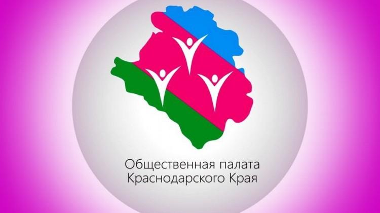 Сотрудничество Совета с Общественной палатой и Уполномоченным по правам человека в формировании нового состава ОНК