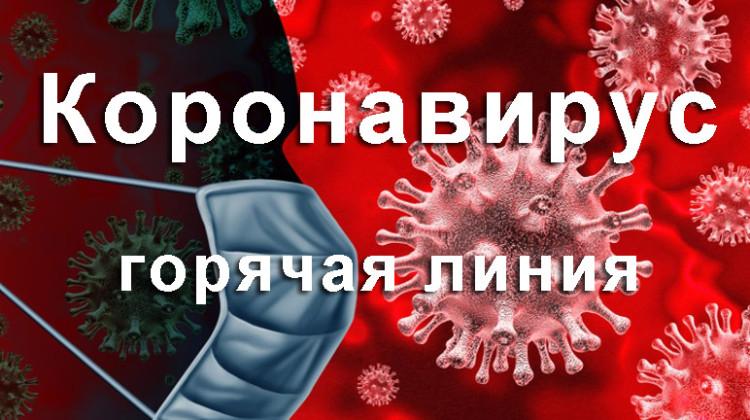 """СПЧ открывает """"горячую линию"""" по мерам поддержки граждан и бизнеса в связи с коронавирусом"""