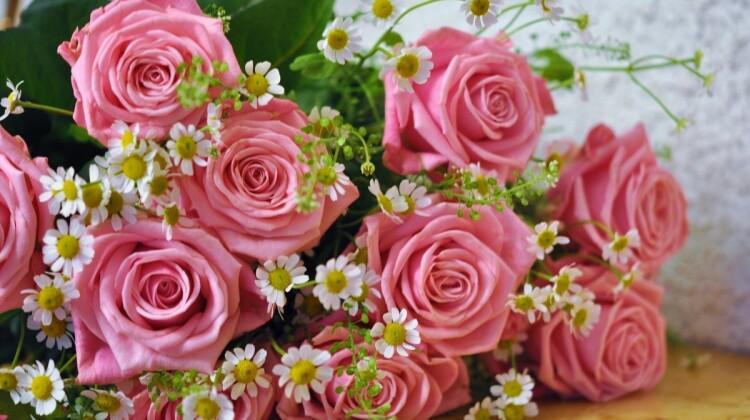 Сегодня юбилейный день рождения у Ольги Малаховой