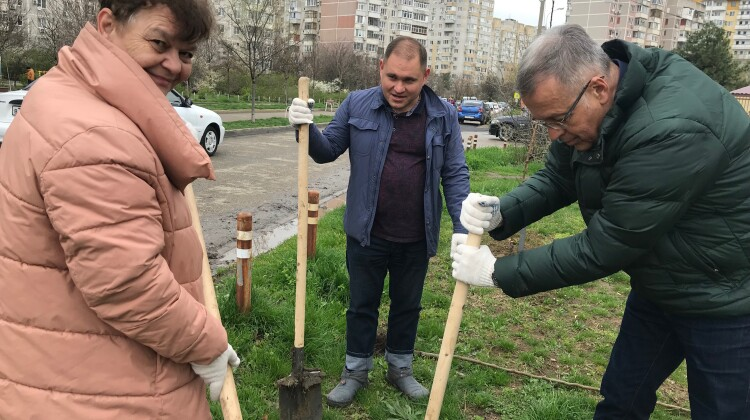 Краснодар присоединился к международной акции «Сад памяти», приуроченной к 80-летию начала Великой Отечественной войны