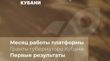 Первые результаты работы платформы Гранты губернатора Кубани